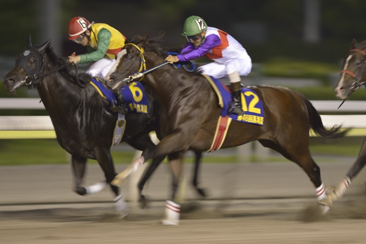 10R_S-One-Prince_120815TCK_46th-The-Kuroshi-Cup(S2-9F)_2056FX4.jpg