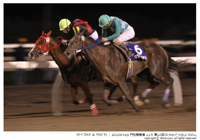 11R_Matsuri-Bayashi&Clave-Screto_100923Monbetsu_10th_The-Floral-Cup(H3-8.5F)_17314FX.jpg