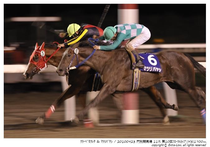 11R_Matsuri-Bayashi&Clave-Screto_100923Monbetsu_10th_The-Floral-Cup(H3-8.5F)_17316FX.jpg