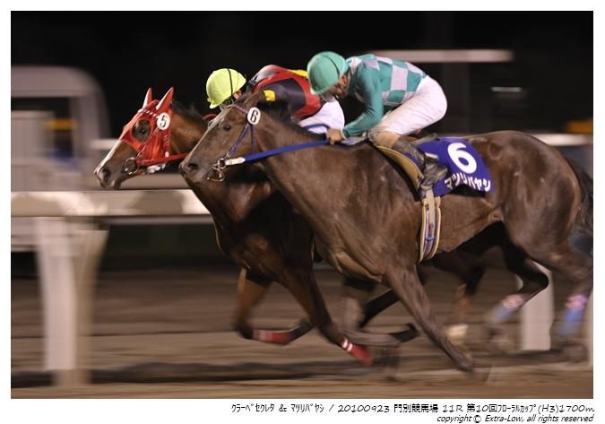 11R_Matsuri-Bayashi&Clave-Screto_100923Monbetsu_10th_The-Floral-Cup(H3-8.5F)_17317FX.jpg