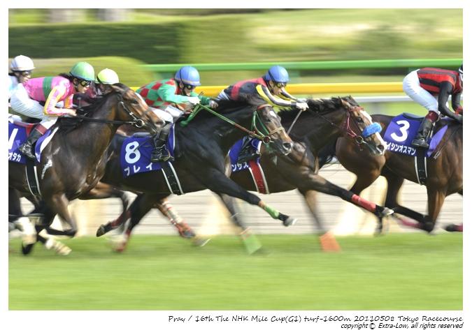 11R_Pray&Shibata.D_110508Tokyo_16th-NHK-Mile-Cup(GⅠ-8F)_23106FX.jpg