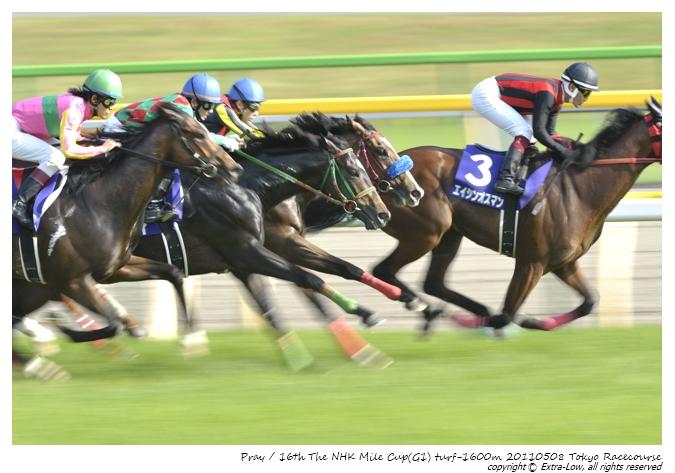 11R_Pray&Shibata.D_110508Tokyo_16th-NHK-Mile-Cup(GⅠ-8F)_23112FX.jpg