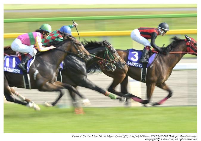 11R_Pray&Shibata.D_110508Tokyo_16th-NHK-Mile-Cup(GⅠ-8F)_23115FX.jpg