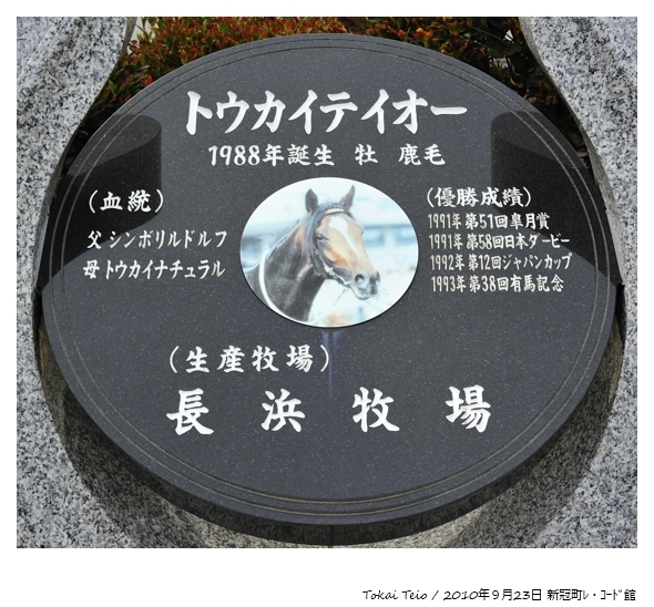 100923_Tokai-Teio_新冠町レ・コード館_16693FX.jpg