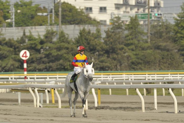 10R_Fujino-Wave&柏木騎手_100505船橋_第22回かしわ記念(JpnⅠ-8F)_08862FX.jpg