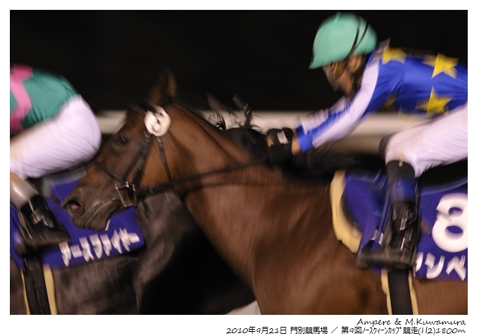 11R_Ampere&M.Kuwamura_100921Monbetsu_9th-North-Queen-Cup(H2-9F)_15563FX.jpg