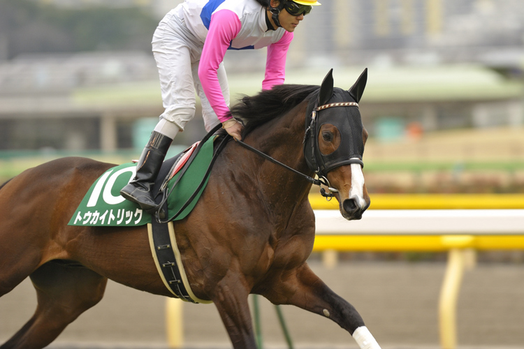 11R_Tokai-Trick&K.Oba_100214Tokyo_60th-The-Diamond-Stakes(GⅢ-Turf17F)_04725FX.jpg